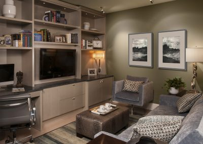 Urban Acoustic Haven Media Room